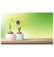 hello spring flower with tulip and snowdrop vector image vector image