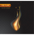 realistic burning fire flame effect with vector image vector image