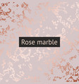 rose marble decorative pattern for design vector image vector image