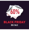 torn hole in sheet red paper black friday vector image vector image