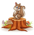 Cartoon funny squirrel on tree stump vector image vector image