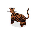 character of toyger cat in kawaii style vector image vector image