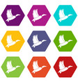 duck icon set color hexahedron vector image vector image