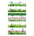 green grass seamless vector image vector image