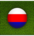 soccer green grass pattern field with russia flag vector image