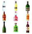big set different bottles alcohol drinks vector image vector image