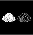 cabbage icon set white color flat style simple vector image