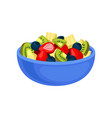 flat icon of appetizing fruit salad sliced vector image vector image