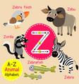 letter z tracing zebra zebu zorilla zebrafish