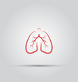 lungs isolated colored icon vector image vector image