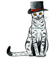 animal portrait cat in tall hat vector image vector image