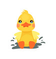 cute little yellow duck chick character playing in vector image vector image