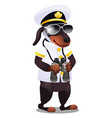 Dog in the costume of the captain of the ship with