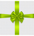 green bow and ribbon on transparent background vector image vector image