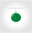 green watermelon vector image vector image