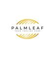 palm leaf logo design vector image vector image