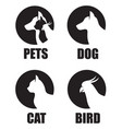 pet shop label set vector image