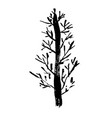 tree silhouette hand drawn vector image
