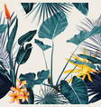 tropical vintage palm monstera plant strelitzi vector image vector image