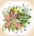cacao beans plant exotic cacao plants vector image vector image