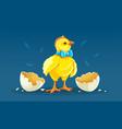 cartoon hen chicken rooster vector image