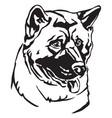 decorative portrait of dog american akita vector image