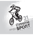 extreme sports vector image vector image