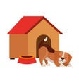 pet shop related vector image vector image