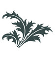 thistle hand drawn thistle leaves scottish vector image vector image