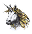 unicorn horse fairy tale animal sketch vector image vector image