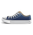 sneaker side view isolated