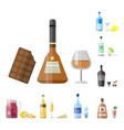 alcohol drinks beverages cocktail appetizer bottle vector image vector image
