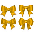 collection golden shiny bows for design vector image
