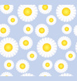 daisy flower seamless pattern for background vector image vector image