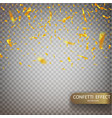 golden confetti falls isolated vector image vector image