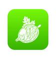 gooseberry icon green vector image vector image