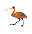 ibis bird symbol of traditional egyptian culture vector image