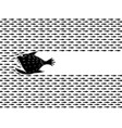 predatory fish hunts vector image