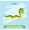 Snake forest animals vector image vector image