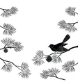 Titmouse on pine branch cutout vector image vector image