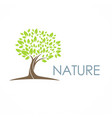 tree nature eco logo vector image vector image