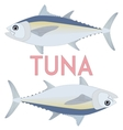 Tuna fish Cool vector image vector image