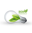 eco light bulb eco friendly glass bulb with green vector image vector image