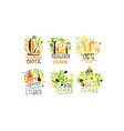 exotic countries labels design set tropic vector image vector image