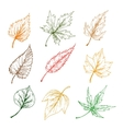 Leaves of trees sketch icons vector image vector image