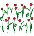 red tulip set vector image vector image