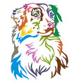 colorful decorative portrait of dog australian vector image vector image