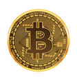 crypto currency bitcoin golden symbol vector image vector image