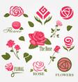 decorative floral rose logo set vector image vector image