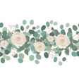elegant seamless border from roses and eucalyptus vector image